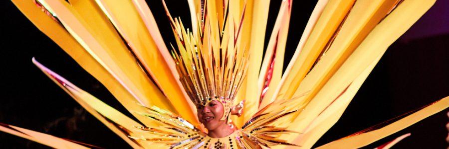 Leeds West Indian Carnival trustee recruitment